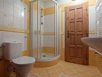 koupelna - apartmán k pronajmutí České Petrovice