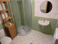 koupelna 1 - chalupa k pronajmutí Olešnice v Orlických horách