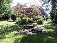 zahrada - chalupa ubytování Olešnice v Orlických horách