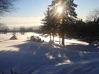 Na Samotě - pronájem chalupy - 25 Říčky v Orlických horách
