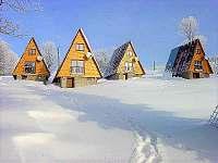 Chata k pronájmu - Čenkovice Orlické hory
