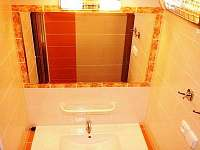 koupelna - chata k pronajmutí Javornice