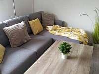Obývací pokoj - chata k pronájmu Javornice
