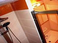 sprchový kout - pronájem chaty Javornice