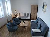 Apartmán U Dubu - apartmán ubytování Jablonné nad Orlicí - 9