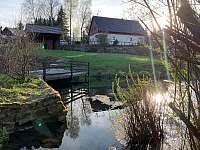 Rybníček na zahradě - chalupa k pronajmutí Orlické Záhoří