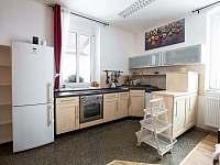 apartmán č. 1 kuchyň - chalupa k pronajmutí Čenkovice