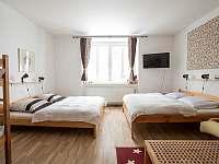 apartmán č.2 - chalupa k pronájmu Čenkovice