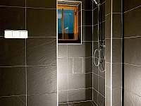 sprcha sauna - chalupa k pronajmutí Bartošovice v Orlických Horách - Nová Ves