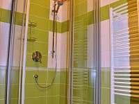 Koupelna se sprchovým koutem - Dolní Orlice - Červená voda