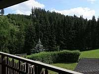 Výhled na zahradu z 1. patra