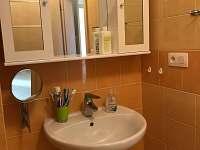 Koupelna - pronájem apartmánu Říčky v Orlických horách