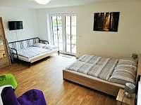 Apartmán 101 (1+1) - k pronajmutí Říčky v Orlických horách