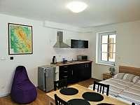 Apartmán 102 (1+kk) - pronájem Říčky v Orlických horách