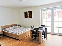Apartmán 102 (1+kk) - k pronájmu Říčky v Orlických horách