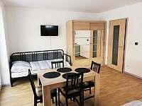 Apartmán 102 (1+kk) - Říčky v Orlických horách