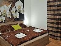 Apartmán 201 (2+kk) - Říčky v Orlických horách