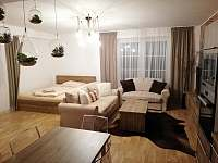 Apartmán 204 (2+kk) - k pronajmutí Říčky v Orlických horách