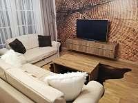 Apartmán 204 (2+kk) - Říčky v Orlických horách
