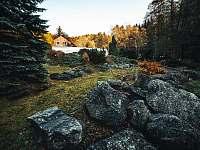 Zahrada - Olešnice v Orlických horách - Rzy
