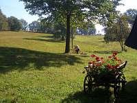 Letní relax... k dispozici lehátko i trampolína :)