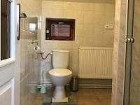 Chalupa u Hejnic Orlický hory pokoj 1 koupelna - pronájem