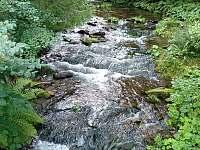 Řeka Zdobnice -