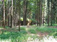 Vojenská pevnost (hned v lese za domem)