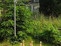 ruské kuželky - chalupa k pronájmu Skuhrov nad Bělou