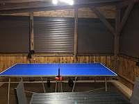 Stolni tenis - chata k pronájmu Červená Voda - Mlýnice