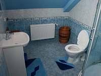 horní koupelna - pronájem chalupy Dolní Morava