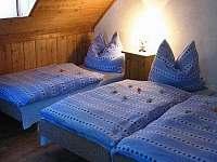 Nový dům Petra u sjezdovek - chalupa - 32 Deštné v Orlických horách