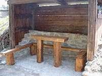 Deštné v Orlických horách - rekreační dům k pronájmu - 26