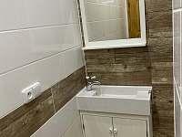 Apartmán pro 4 osoby koupelna - k pronájmu Dolní Morava