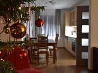 Vánoce - chata k pronajmutí Bystré v Orlických horách