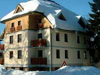 ubytování Ski centrum Říčky v O.h. Apartmán na horách - Deštné v Orlických horách