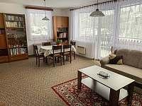 Obývací pokoj - pronájem chalupy Klášterec nad Orlicí