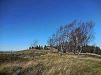 Chalupa pod Čihalkou - chalupa - 14 Olešnice v Orlických horách