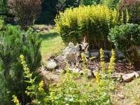 zahrada - pronájem chalupy Jamné nad Orlicí