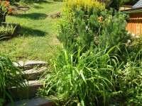 zahrada - Jamné nad Orlicí