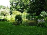 Rybník - chalupa k pronajmutí Javornice
