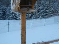 Roubenka U Skřítka - chalupa k pronájmu - 6 Olešnice v Orlických horách