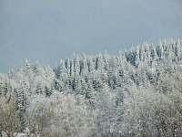 Roubenka U Skřítka - chalupa ubytování Olešnice v Orlických horách - 5
