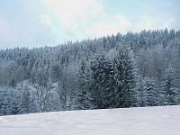 Olešnice v Orlických horách - chalupa k pronajmutí - 4