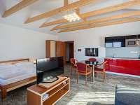 Apartmán na horách - zimní dovolená Olešnice v Orlických horách