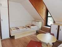 patro pokoj č. 2 - dvoulůžková ložnice se vstupem na zadní terasu - Bušín