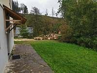 zahrada a vstup k ložnicím - chalupa k pronajmutí Říčky v Orlických horách