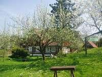 ubytování Sjezdovka Kačenčina sjezdovka - Olešnice v O.h. Chalupa k pronájmu - Sněžné