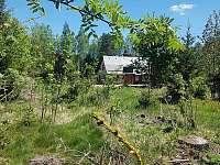 Chalupa u lesa - chalupa k pronajmutí - 4 Dolní Orlice