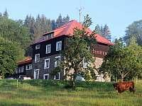 Levné ubytování Koupaliště Rokytnice v Orlických horách Chata k pronájmu - Zdobnice - Kunčina Ves